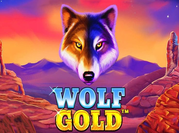 The logo of the popular Wolf Gold slot machine, which can be played for free on playamo.net